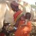 milking camel