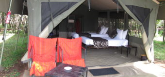 Mara Eden Safari Camp – Where Magical Untamed Experience Exists